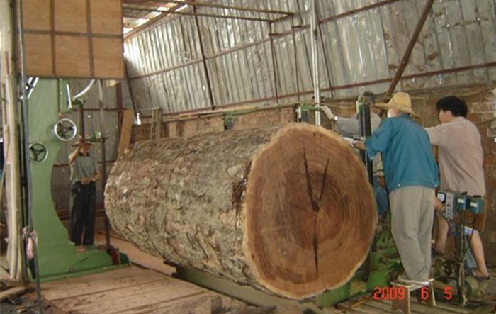 Sierra de cinta de madera MJ3113C (48